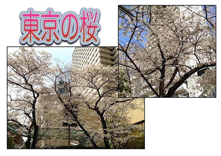 Page_2_20130325075202.jpg