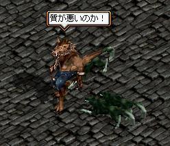マー犬紋章集め4