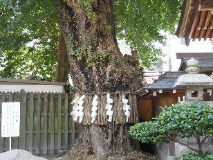 博多うまいものツアー2011-8 (58)