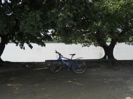 サイクリング9-10 (11)