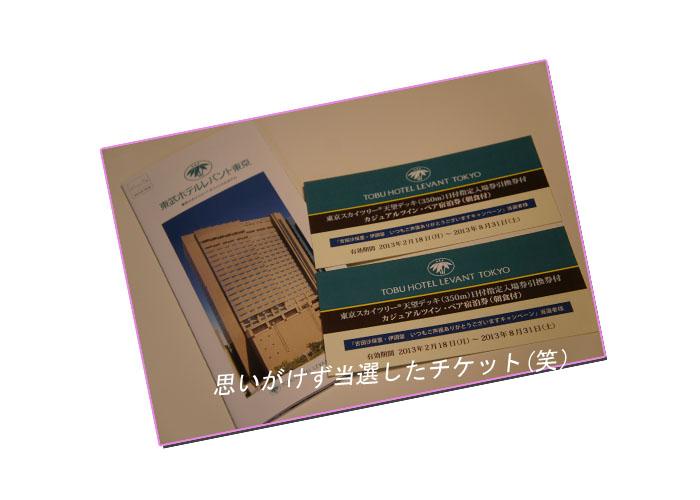 E38381E382B1E38383E38388.jpg