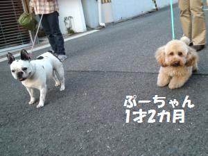 001_convert_20130502191747.jpg