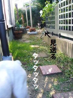 002_convert_20130920150928.jpg