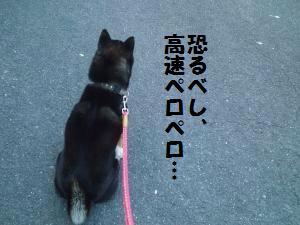 003_convert_20130530180542.jpg