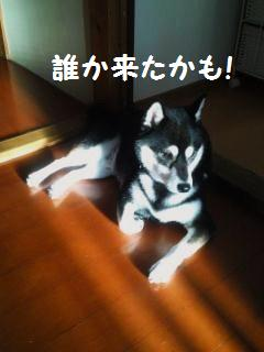 005_convert_20130910123244.jpg