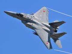 F-15_convert_20130525122246.jpg
