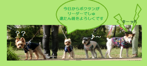 20130416r01.png