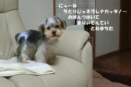 2014110801.jpg