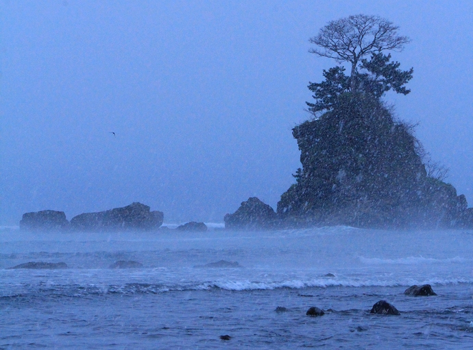 雪降る雨晴海岸