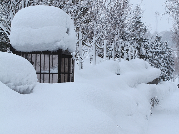2012年2月の雪の様子