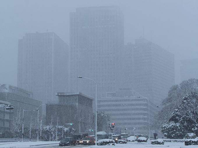 雪の東京(1月14日)