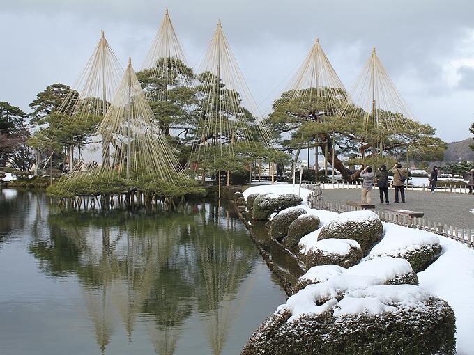 晩冬の兼六園 雪吊り