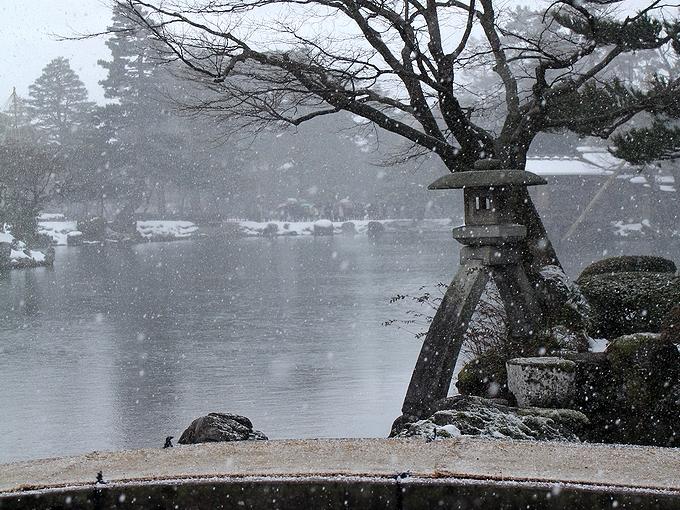 晩冬の兼六園 ことじ灯篭と雪
