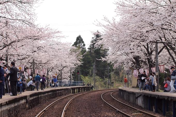 能登鹿島駅の春 2013年