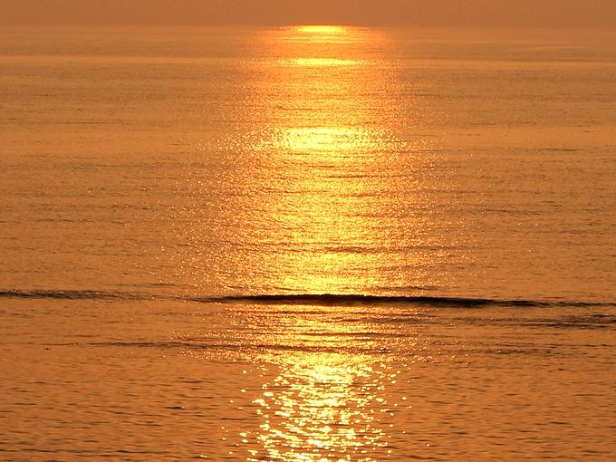 黄金色に輝く日本海