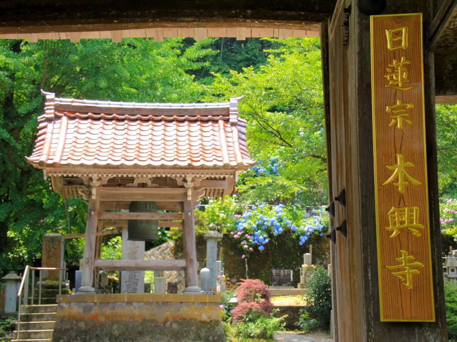 金沢市本興寺の山門