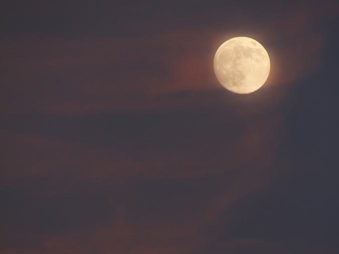 茜の雲と月