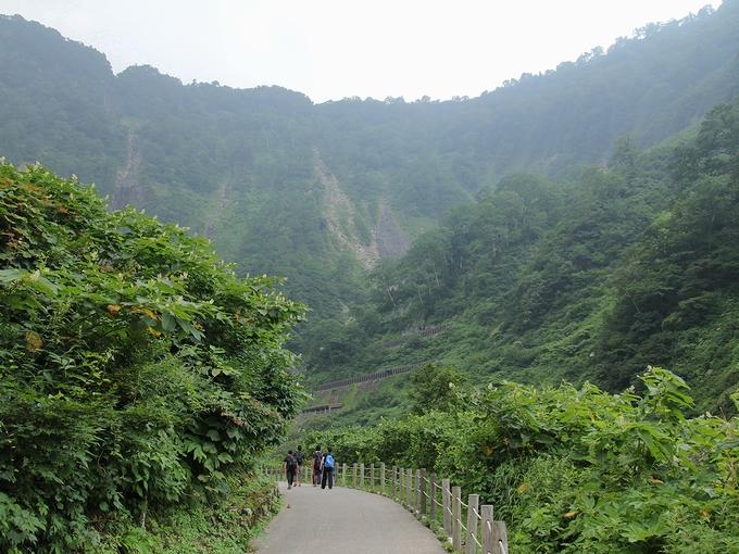 称名滝へ続く道