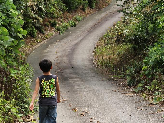 鉢伏山山頂への道