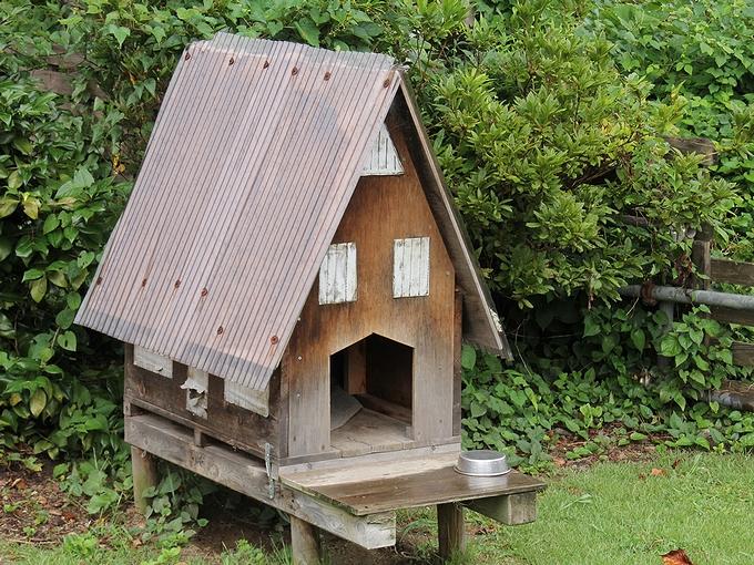 合掌造りの犬小屋