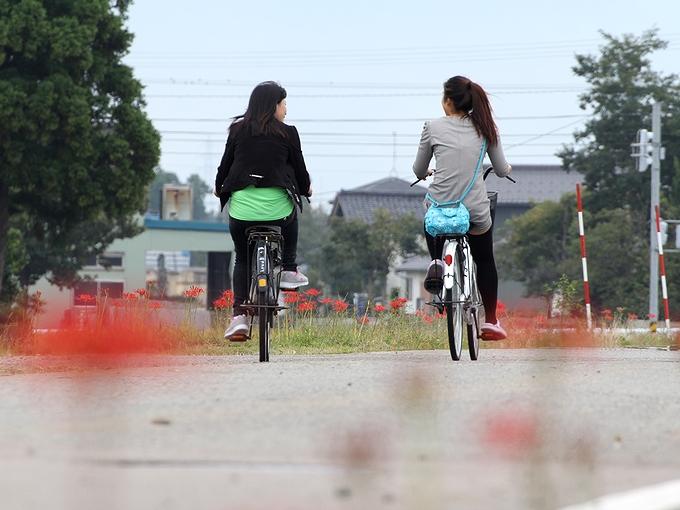 彼岸花と自転車と 南砺市福光