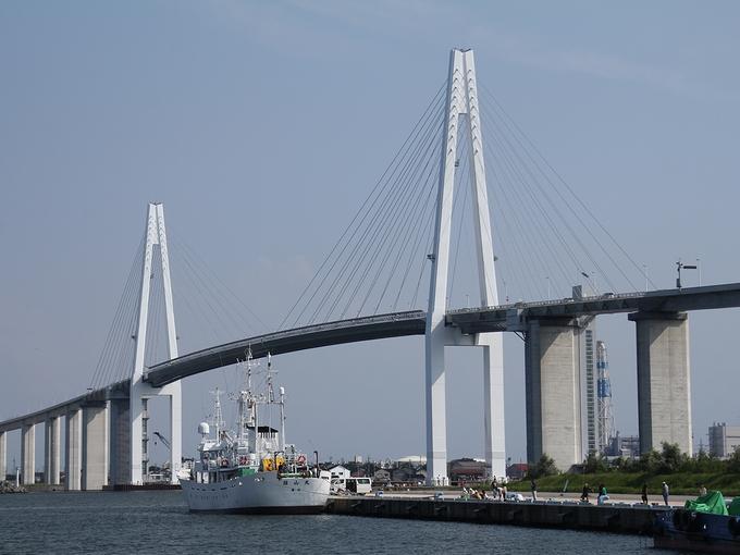 海王丸パークから見た新湊大橋