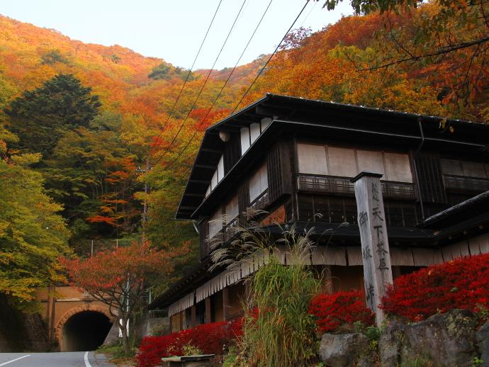 御坂峠の「天下茶屋」と付近の紅葉