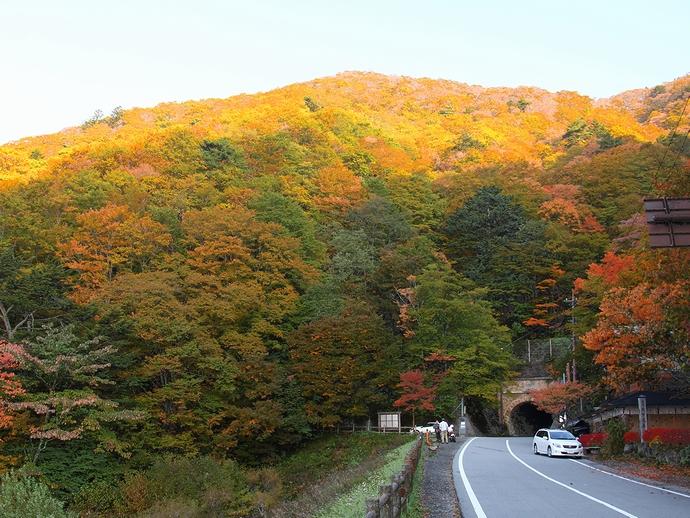 御坂峠付近の紅葉