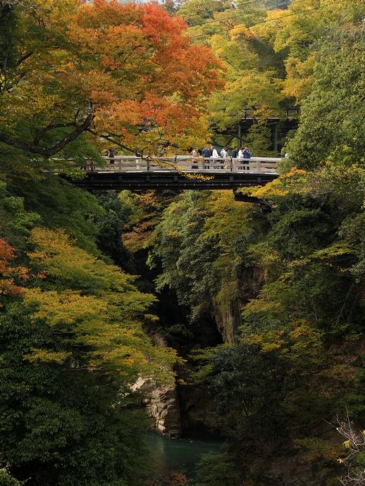 新猿橋より眺めた猿橋と紅葉