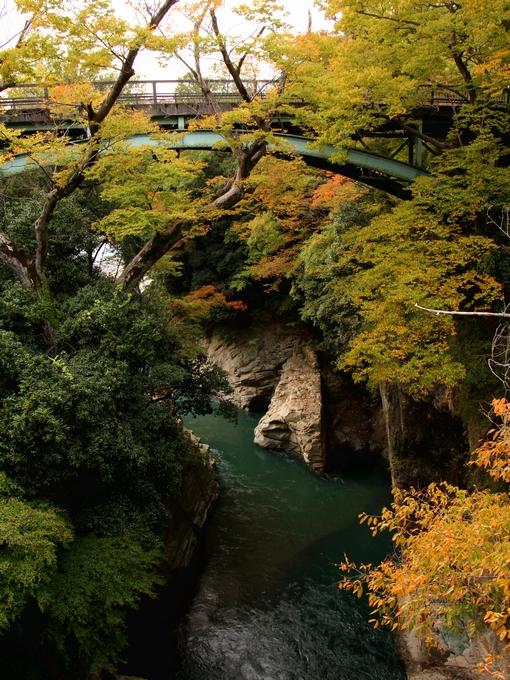 猿橋より渓流を見下ろす
