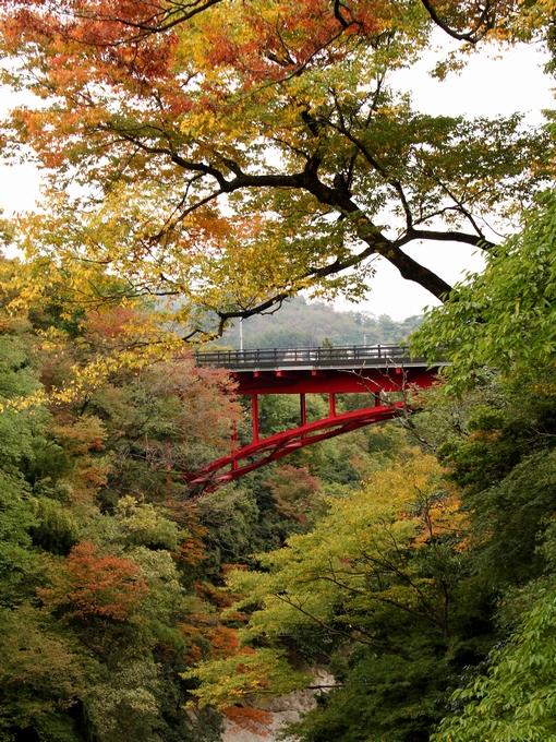 猿橋より眺めた新猿橋と紅葉