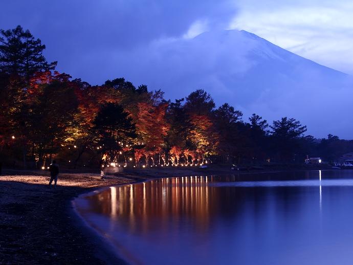 富士山と紅葉ライトアップ 山中湖畔にて