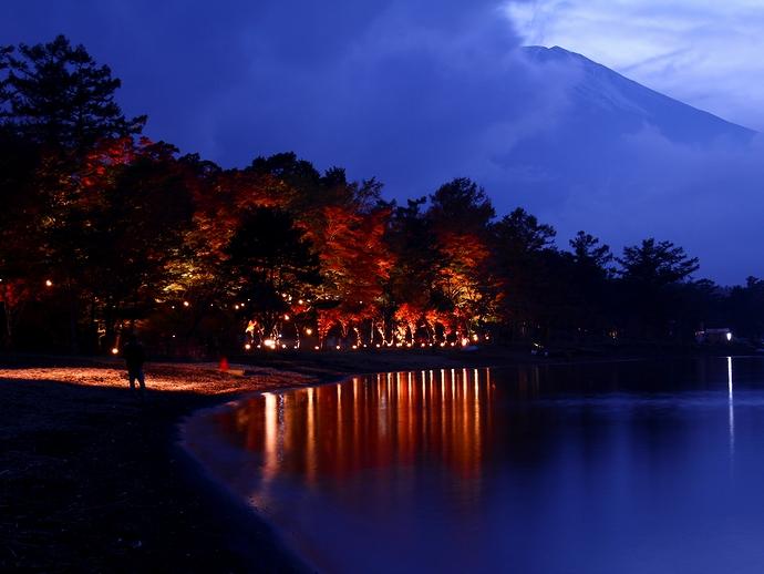 ブルーモーメントの富士山と紅葉 山中湖畔ライトアップ