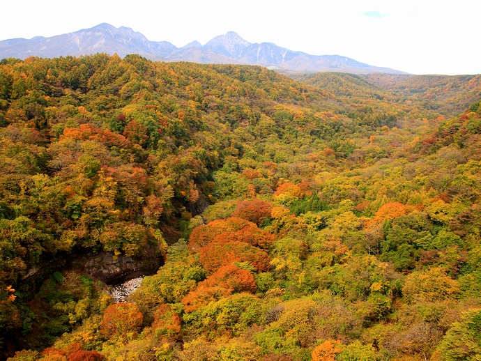 八ヶ岳高原大橋より眺めた八ヶ岳と高原の紅葉