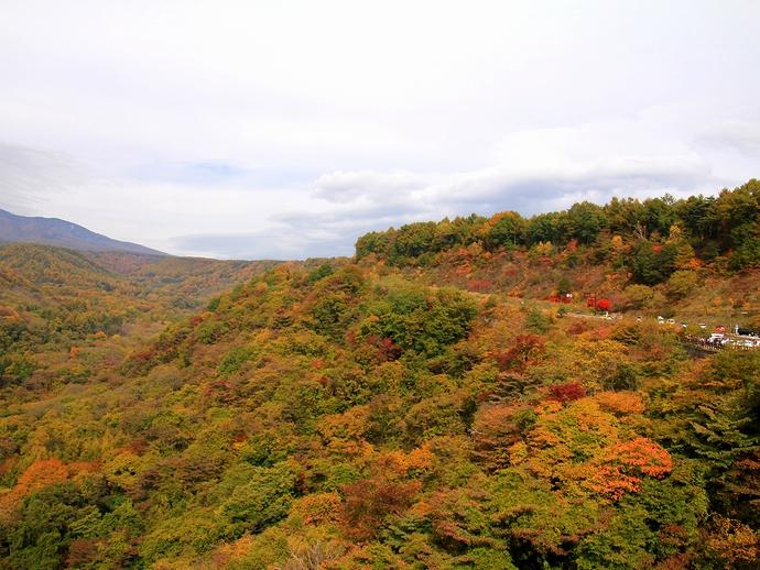 八ヶ岳高原大橋より眺めた高原の紅葉
