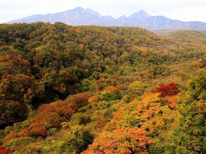 八ヶ岳高原大橋から眺めた八ヶ岳と紅葉