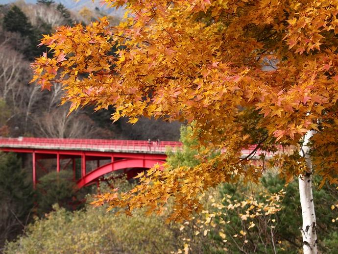 晩秋の東沢大橋 八ヶ岳高原