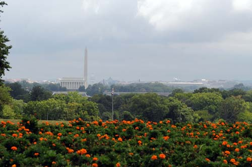 アーリントン墓地からの眺め
