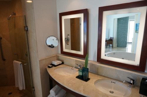 Aqua suite powder room