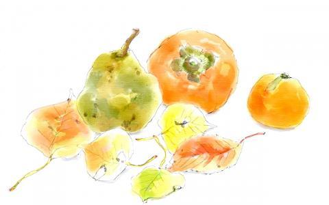 果物と落ち葉