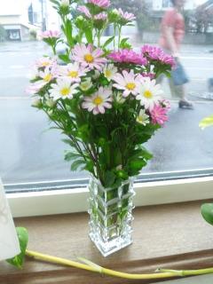 患者さん宅 庭先の花