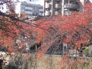 2014-11-23-13.jpg