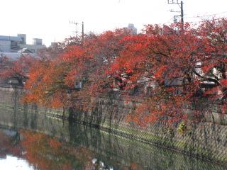 2014-11-23-14.jpg