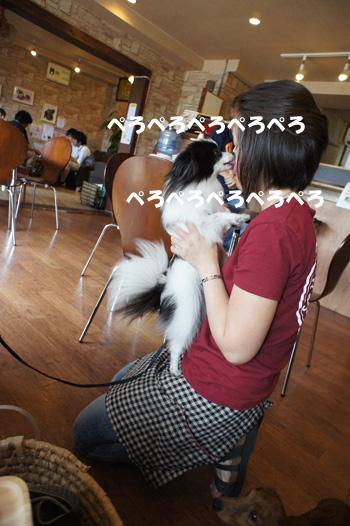 DSC02042_2.jpg