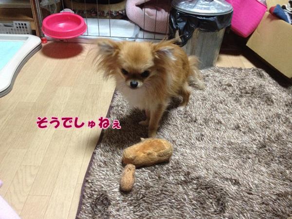 attachment01_2_20121120222408.jpg
