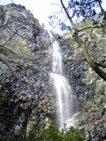 観音寺市不動の滝と桜2