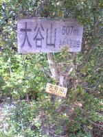 観音寺市大谷山登山道4