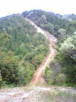 観音寺市大谷山登山道3