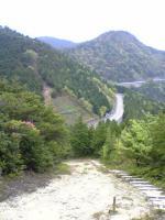 山ツツジ満開の登山道1