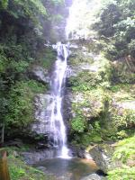徳島県貞光川水系の鳴滝3
